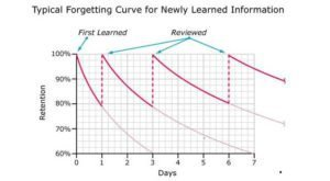 Spaced Repetition System